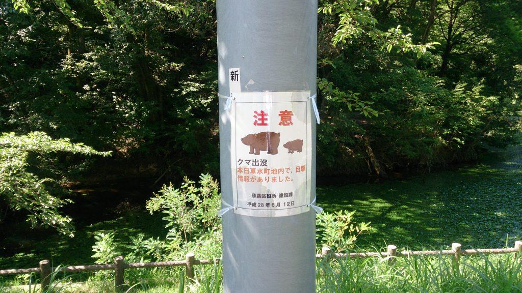 秋葉山公園
