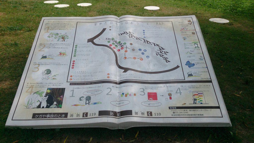 新潟県スポーツ公園遊具