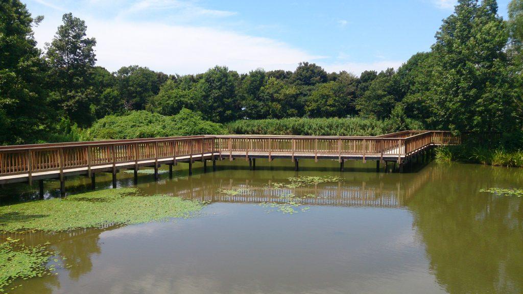 新潟県スポーツ公園自然