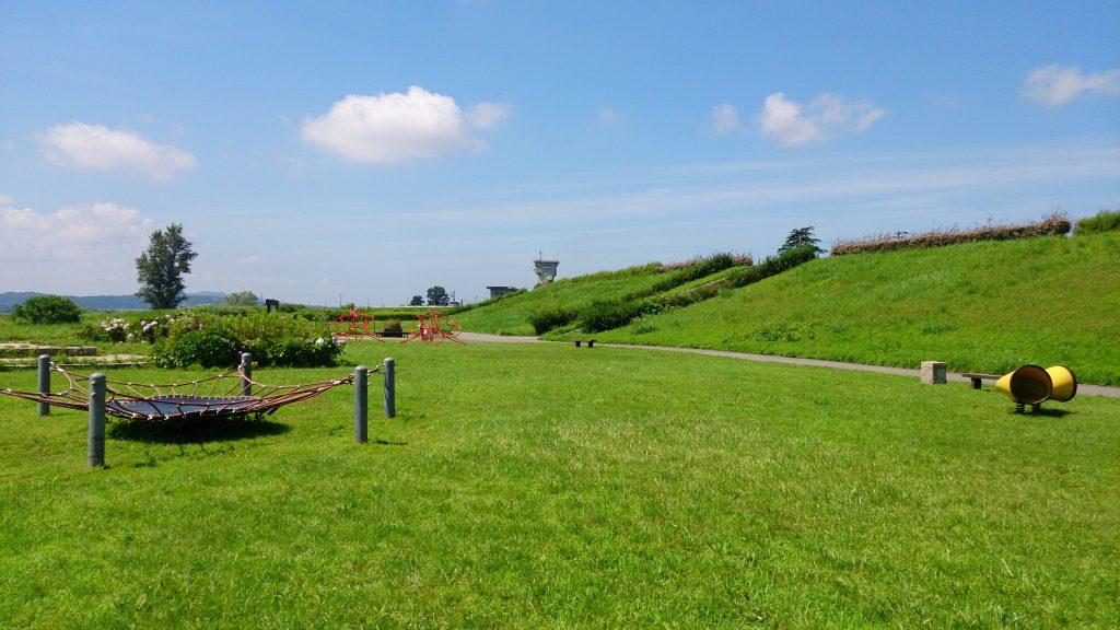 阿賀野川フラワーライン1
