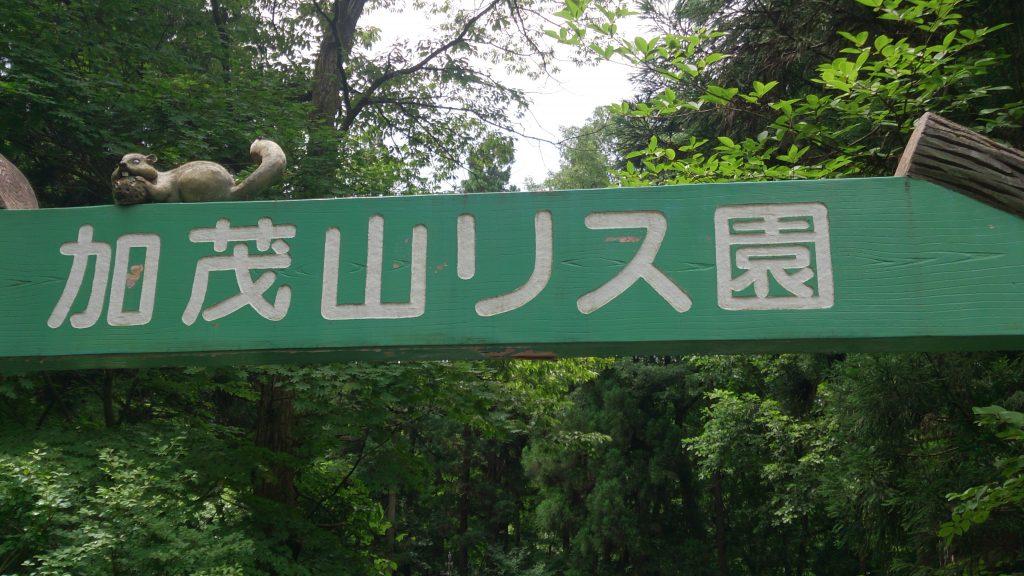 加茂山公園リス