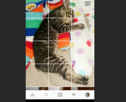 写真の分割